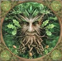 Plant Journeying  -  Accessing Plant Spirit Medicine...