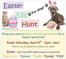 Easter Egg Hunt -- for Dogs!