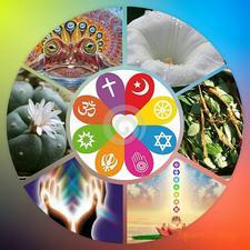 Pachamama Sacred Medicines logo