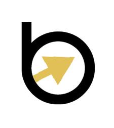Boardroom Briefings  logo