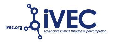 iVEC Panel Discussion