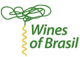 Wines of Brazil present the wines of the World Cup!
