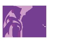 Muslim Sisters of Éire logo