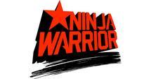 Desert Dynamite Ninja Academy logo