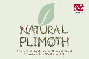 Natural Plimoth Series: Close Encounters of the Wild...