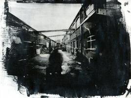 Double Negative Paper Portraits