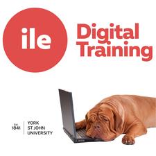 ILE Digital Training Accessibility Courses logo