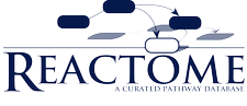 Reactome Pathway Database logo
