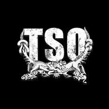 TSO | TEATRO SANITARIO DE OPERACIONES logo