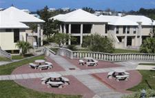 Bermuda College logo