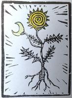Aligning Heaven & Earth: Astrology, Herbs,...