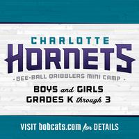 Charlotte Hornets Bee-Ball Dribblers Mini-Camp - Fort...