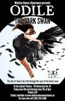 Odile: The Dark Swan