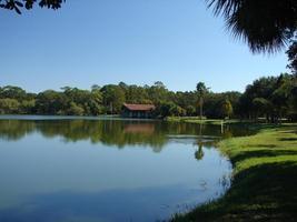 Lakeshore Landscape
