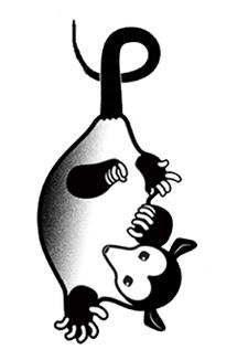 Awesome Possum Events logo