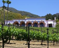 Vineyard Tour and Tasting - August 17th