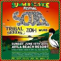 Summer Solstice Festival 2014 - SOJA • Tribal Seeds •...