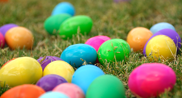 egg fest