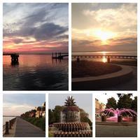 Charleston, SC and Savannah, GA  Charter Bus Trip -...