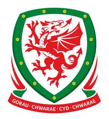 Football Association of Wales - COMET Team logo