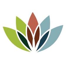 City of Statesville  logo