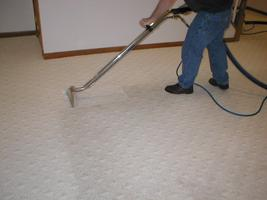 ACE Carpet Care and Fabric Hygiene-Tampa