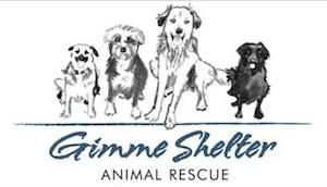 Gimme Shelter Animal Rescue's 3rd Annual Summer Benefit
