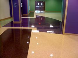 ACE Hands on Hard Floor Care (VCT)-Orlando