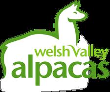 Welsh Valley Alpacas logo