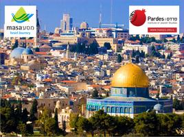 Yom Yerushalayim; Learn, Explore, Experience Jerusalem.