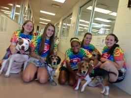 """Must Love Mutts"" Program: Intern Program for Young..."