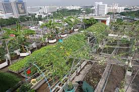 Urban Farming: From Vision to Reality - A Swiss...