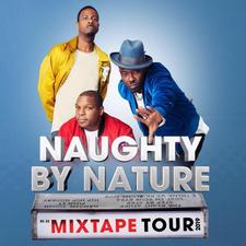Naughty by Nature logo
