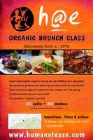 Organic Brunch Class