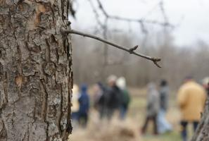 Pruning 101: Hands-on at the Orchard!