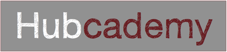 Lean Strategy For Social Enterprise - Hubcademy