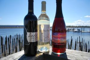 Boston Harbor Islands Wine Release Party