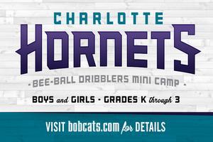 Charlotte Hornets Bee-Ball Dribblers Mini-Camp - Ray's...