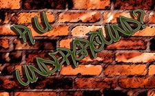 R U Underground? & Insanity Events logo