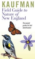 HOW WE DISCOVERED THE NATURE OF NEW ENGLAND: by Kenn &...