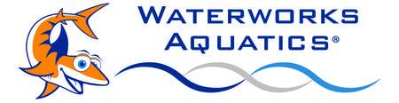 World's Largest Swimming Lesson - Waterworks Aquatics