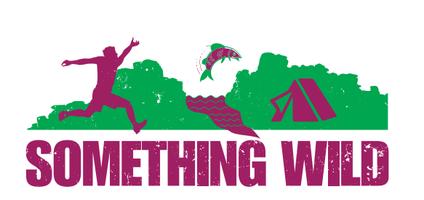 Something Wild Trail Running Festival Dartmoor...
