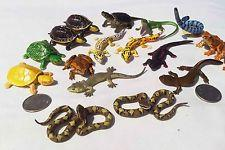 Snakes, Lizards, Turtles, and Crocs…Oh My! (Free)