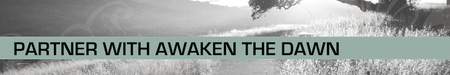 Awaken the Dawn 2014 Vision, Strategy, and Partnership...