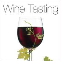 Lovely Links Stylist Social: Wine Tasting Party