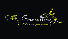 Fly Consulting logo