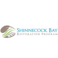 Restore Eelgrass to Shinnecock Bay