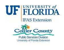 UF IFAS Collier Extension Commercial Horticulture logo