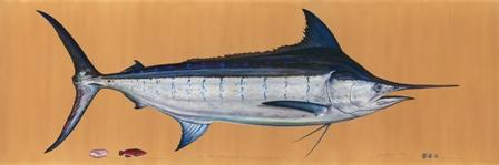 James Prosek: Ocean Fishes Talk
