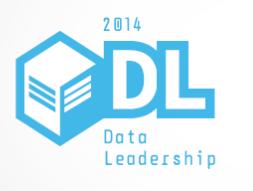 Data Leadership 2014
